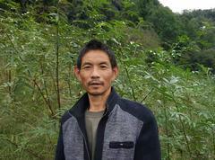 鹿鸣1420亩平昌青花椒2020年新货(可议价)