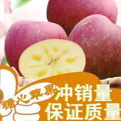 红富士苹果  四川汉源高山冰糖心苹  脆甜新鲜 精装大果12斤送2斤批发包邮