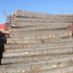 俄罗斯进口冷杉原木34cm 6m