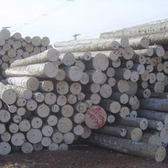 俄罗斯进口冷杉原木34cm