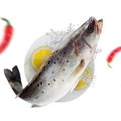 海鲈彩虹斑鱼大黄鱼富贵鱼大礼包 真空包装