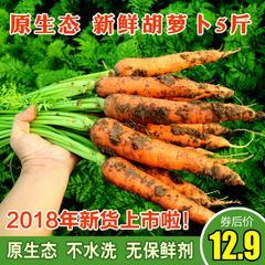 新鲜胡萝卜